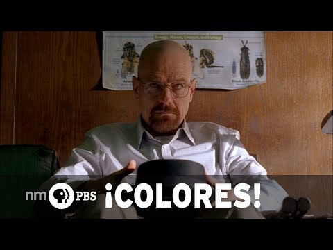 "NMPBS ¡COLORES!: Brian Cranston & the end of ""Breaking Bad"""