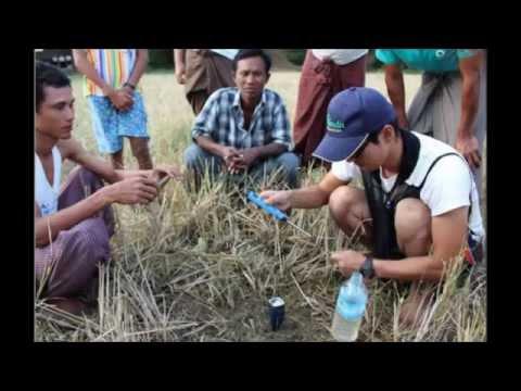 【ミャンマー】世界でも稀な、多種類素材を複合発酵させる技術で、稲作農家を支援ー万田発酵