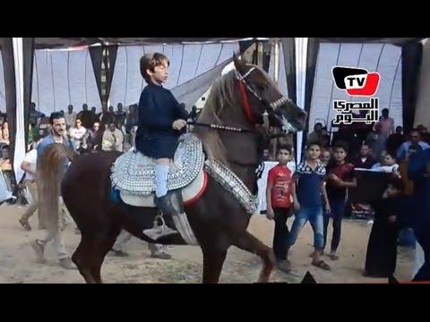 طفل يبهر الحاضرين بقيادته لجواد بمهرجان الدقهلية الأول للخيول العربية thumbnail