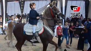 طفل يبهر الحاضرين بقيادته لجواد بمهرجان الدقهلية الأول للخيول العربية