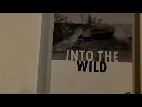 Into the Wild summary