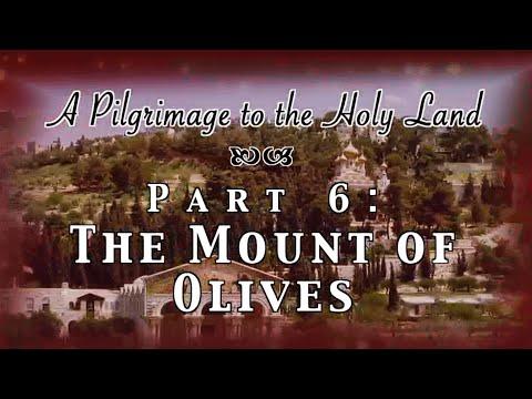 Mount of Olives - Pilgrimage 6