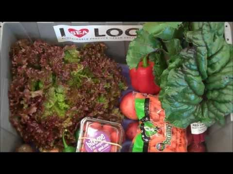 Seattle's Local Organic Produce Box for Oct. 15th - 19th