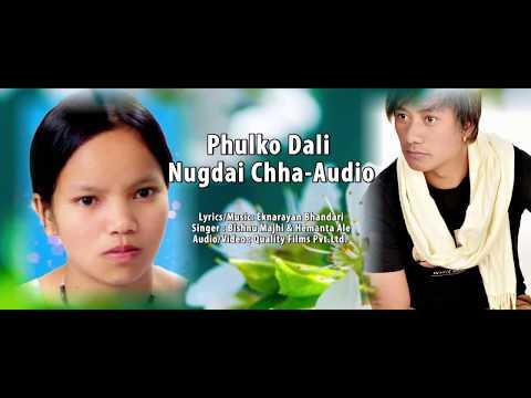 New Lok Dohori Song | Phulko Dali Nugdai Chha | Bishnu Majhi & Hemanta Ale | Official Audio