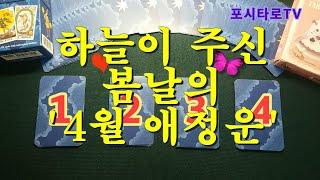 [타로카드_미래 애정운] 하늘이 주신 가슴 설레는 봄날의 '4월 애정운' (Feat.연애운, 솔로연애운, 남…