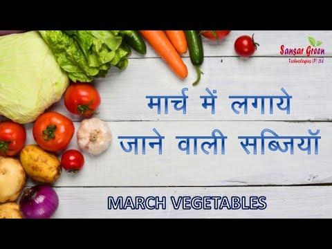 मार्च में  लगायी जाने वाली सब्जियाँ || March Vegetables