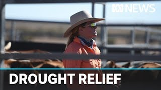 CWA infuriated by Government's 'disrespectful' drought grants program | ABC News