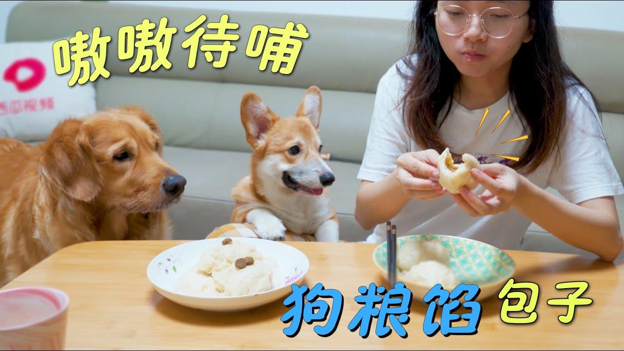 """主人做""""狗粮馅""""包子,狗狗会喜欢吗?"""