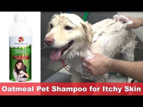 Dog Shampoo for Dry, Itchy, Irritated, & Sensitive Skin by Healthy Clean Pet