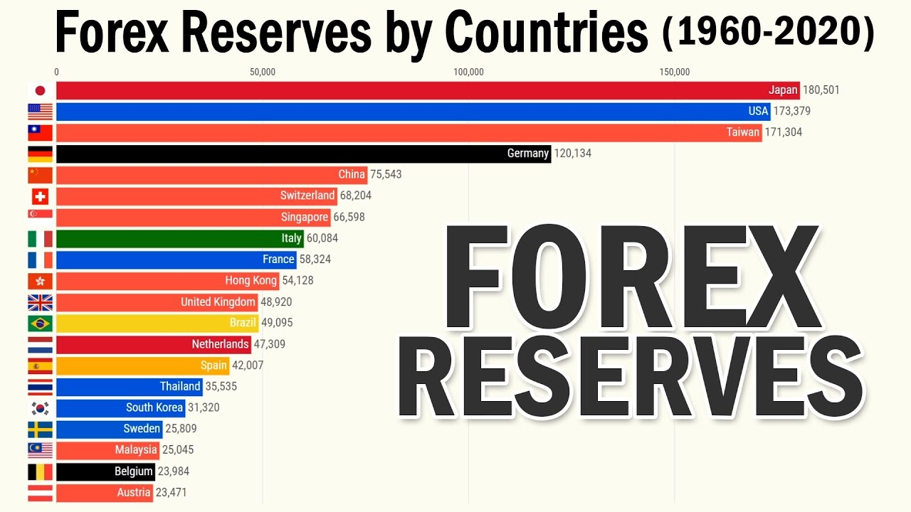 Why Countries Hold Foreign Exchange Reserves