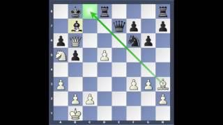 Kasparov - Topalov frá árinu 1999