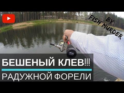 Рыбалка на форель.