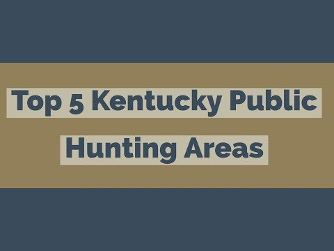 Top 5 Kentucky Public Hunting Area
