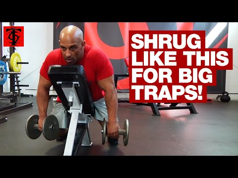 Chest Supported Incline Shrug