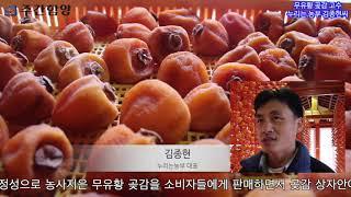 무유황 곶감 고수  누리는 농부 김종현