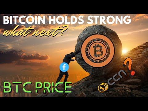 Bitcoin Price Bounces Back! Crypto Coin News Vs Google, BTC At G20 - Cryptocurrency News