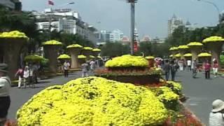 Gambar cover Đường hoa Nguyễn Huệ Sài Gòn  - Xuân 2011