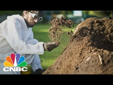 Terra Lets You Grow You Own Backyard Furniture With Recycled Cardboard | CNBC