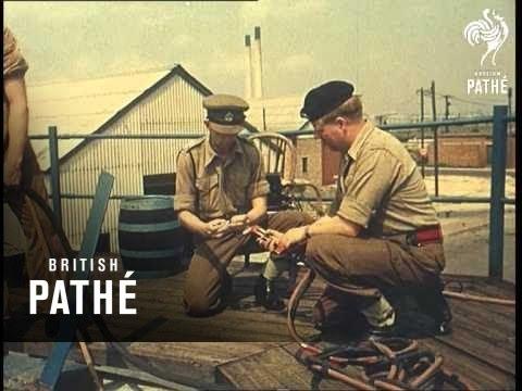 army-frogmen-aka-army-frogman-training-(1961)