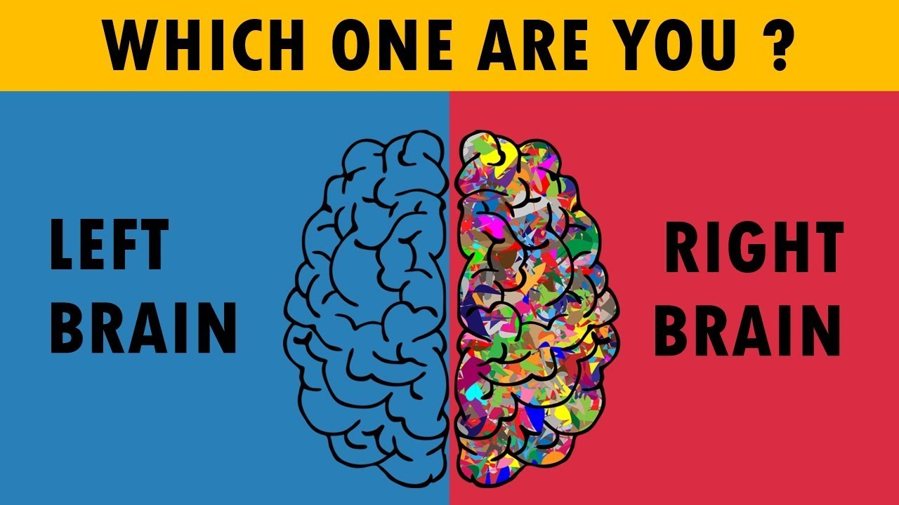 Are You Right Or Left Brain Dominance ? Personality Test ...