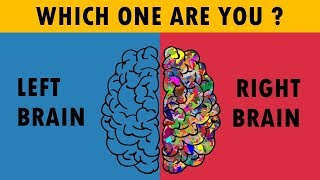 Are You Right Or Left Brain Dominance ? Personality Test