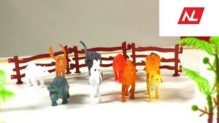 Распаковка игрушечных животных/Unpacking of animals toys.