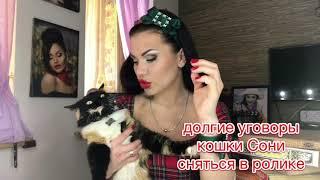#EVгеникаЧИТАЕТ стихи «первой не писала» поэт Олег Ломовой долгие уговоры моей кошки, тоже вошли)