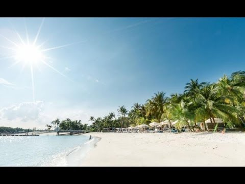 The Ultimate Martial Arts Vacation | Evolve Vacation