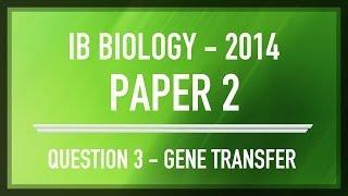 question 3 ib sl biology past paper 2 section b gene transfer