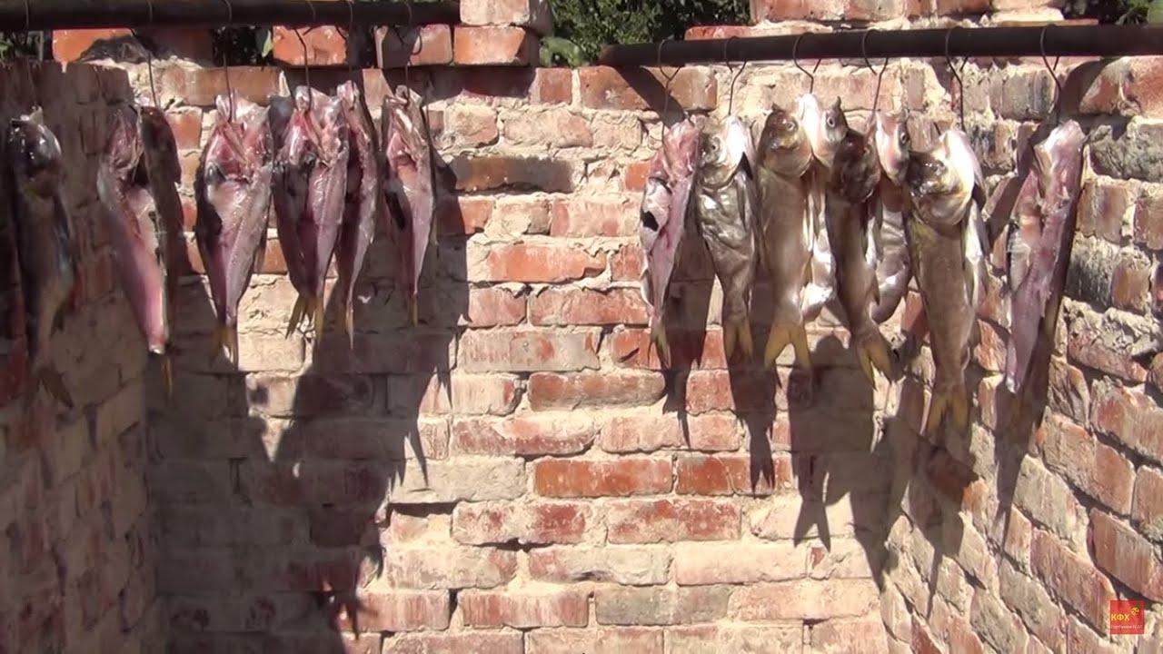 Горячее копчение рыбы,толстолобика.Коптильня собственными руками .Рыба из собственного пруда.
