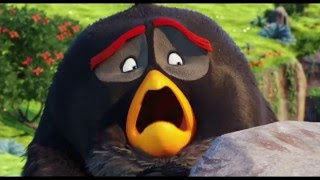 Angry Birds - Trailer español (HD)