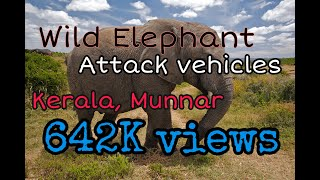 Elephant attack vehicle @ eco point munnar kerala