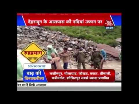 Special Report: Assam Flood Situation Worsens, Animals In Kaziranga Park At Risk