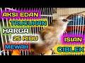 Aksi Edan Trucukan Harga  Ribu Super Mewah Isian Ciblek Ropel Roll Panjang  Mp3 - Mp4 Download