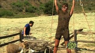 Fear Factor Season 7 Episode 6 - The Bee's Are So Angry thumbnail