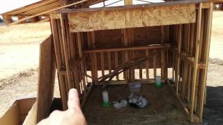 Diy Pallet Chicken Coop For Free Range Chickens
