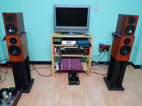 Musical Paradise MP 301 MK3 Thai