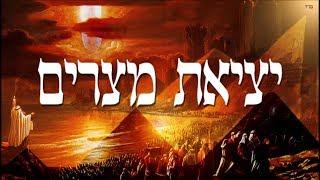צדיק בן 3 מלמד על יציאת מצרים ועשרת המכות חובה לצפות!!!