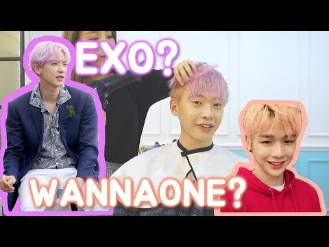 Cover Lagu Rambut  KPOP STAR WANNA ONE Kang Daniel!ㅣYOHONEY COWOK KOREA HITSLAGU