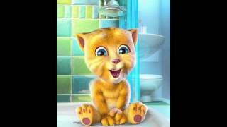 Talking Ginger - прикольное приложение