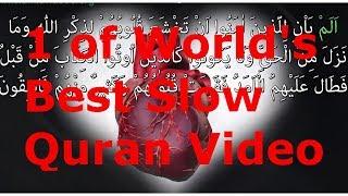 1 of worlds best slow quran recitation amazing views surah iron 1 1 words