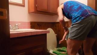 How to potty train teach a child to want to pee and poop in the potty toilet