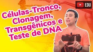 Células-Tronco, Clonagem, Transgênicos e Teste de DNA - Revisão ENEM Biologia - Prof. Paulo Jubilut thumbnail