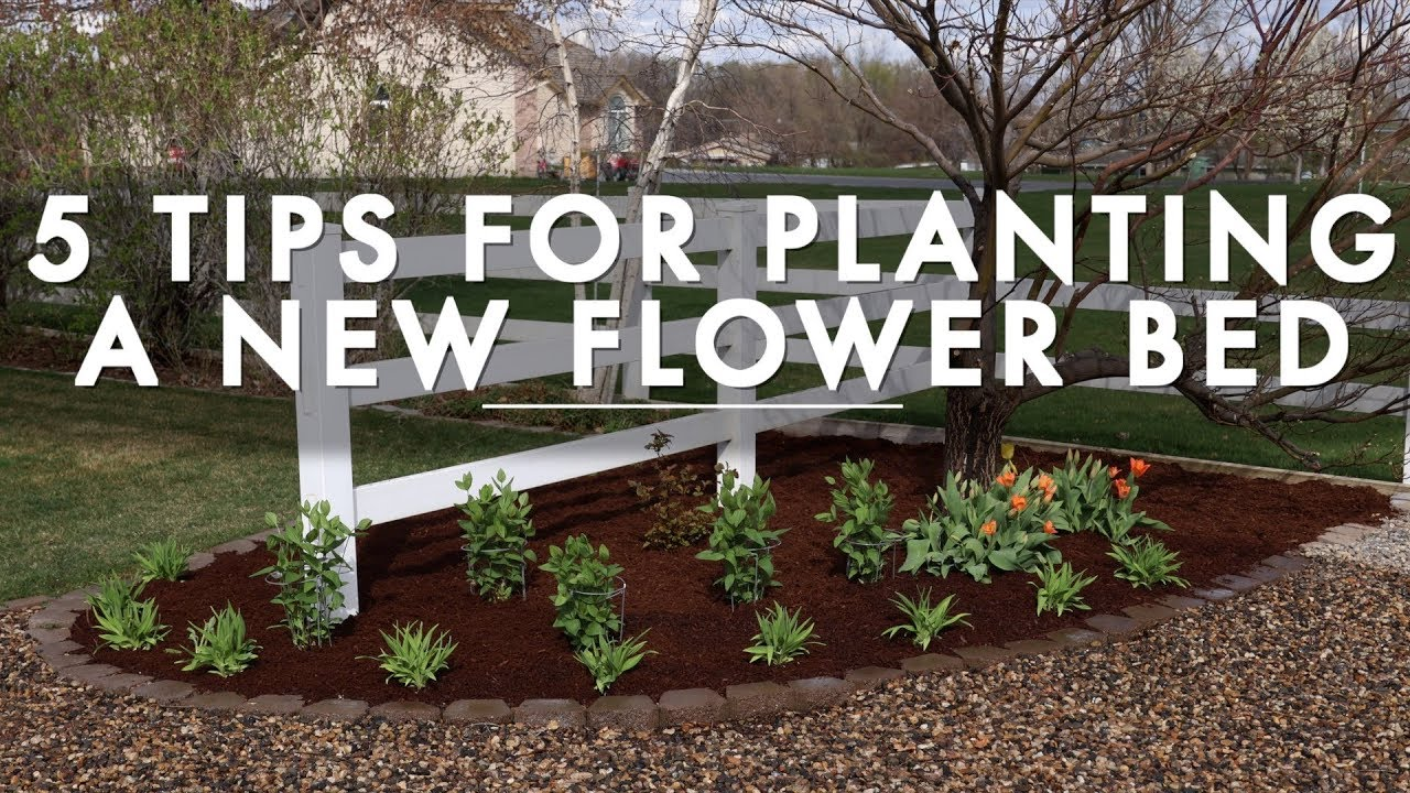 5 Tips For Planting A New Flower Bed Garden Answer Youtube