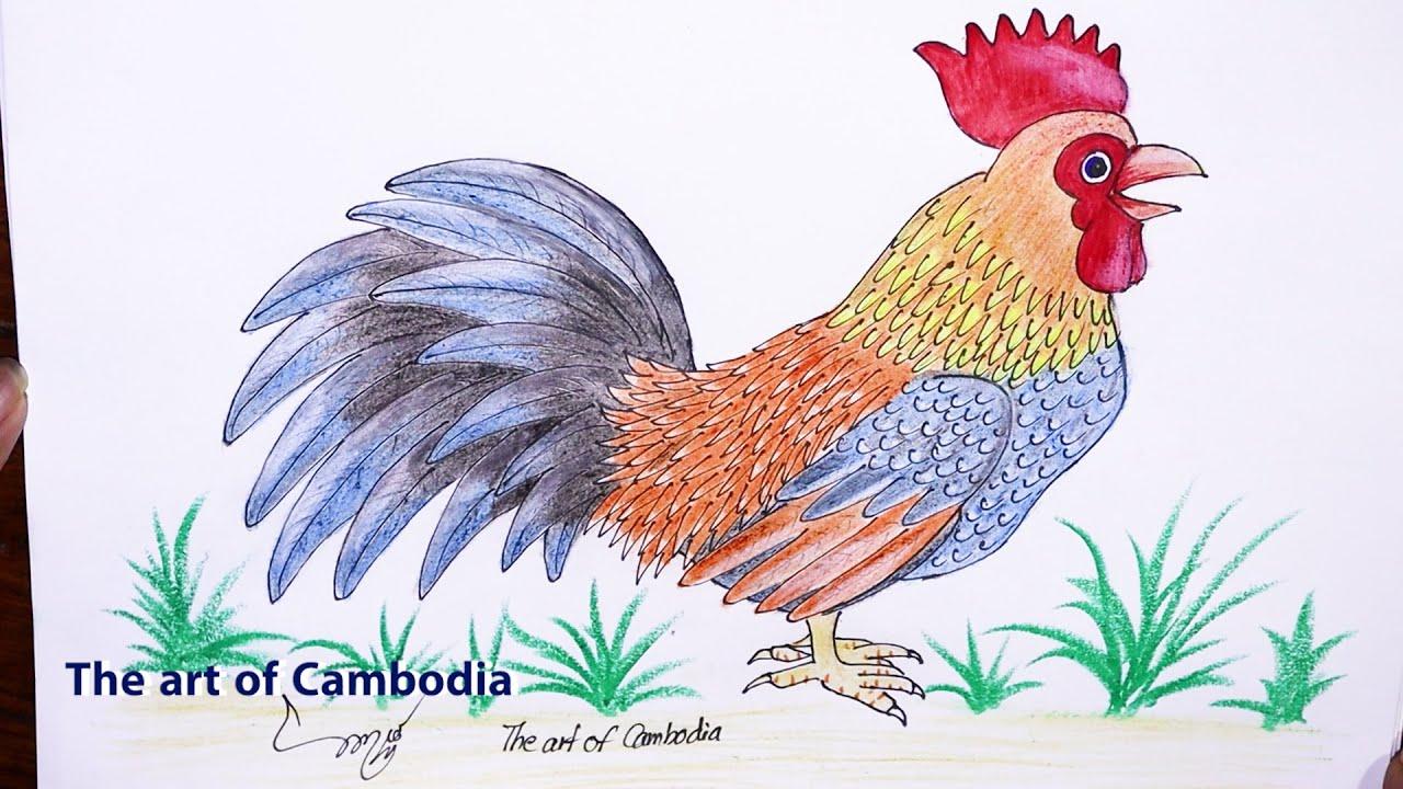 របៀបគូររូបមាន់ | How to draw rooster step by step - YouTube