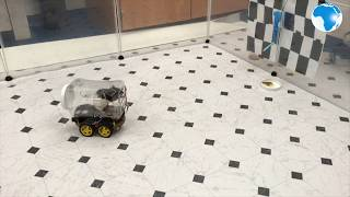 Scientists successfully train rats to drive tiny cars
