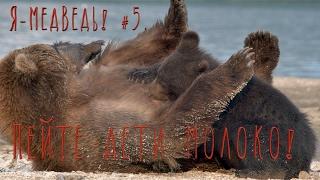 Мимишки. Пейте дети молоко! //Бурый медведь#5. // Природа для самых маленьких.(Бывают зверушки травоядные – это те, которые растения едят. Бывают хищные – те, кто ест мясо. Бывают такие,..., 2017-02-21T09:35:17.000Z)