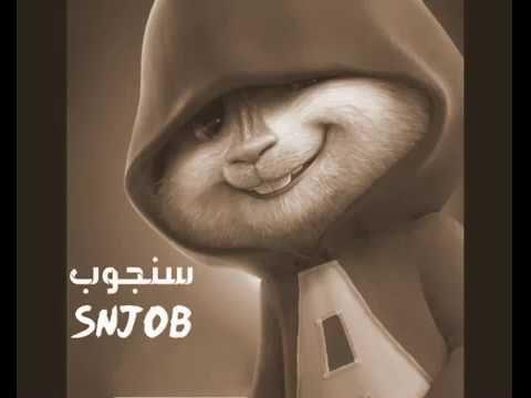 وال وال ولك اتخببببل بصوت سناجب