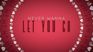 Never Wanna Let You Go - Megan Nicole (Lyric Video)