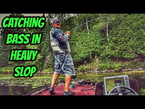 Catching bass in heavy slop